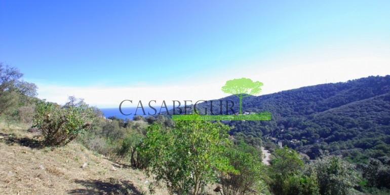 ref-886-sale-plot-es-valls-sa-riera-sea-views-begur-costa-brava-casabegur- (2)