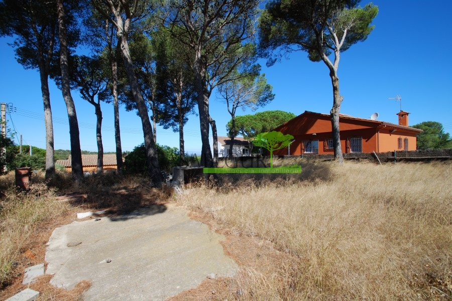 Terreno situado en zona tranquila de Begur
