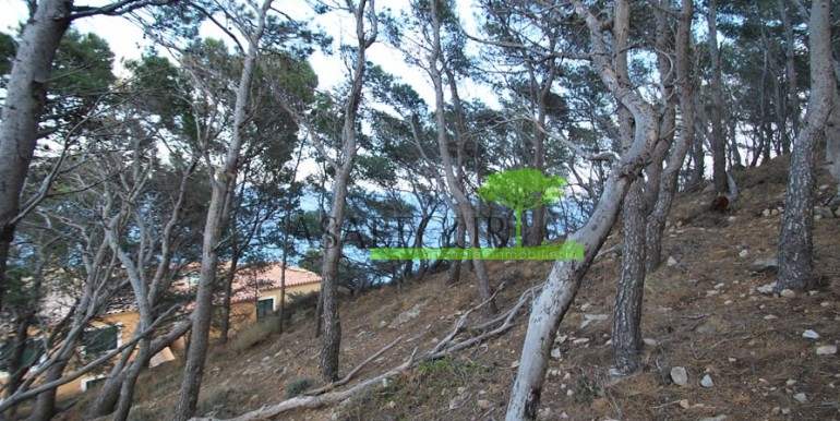 ref-1083-venta-parcela-aiguafreda-sale-plot-sea-views-costa-brava-casabegur-0