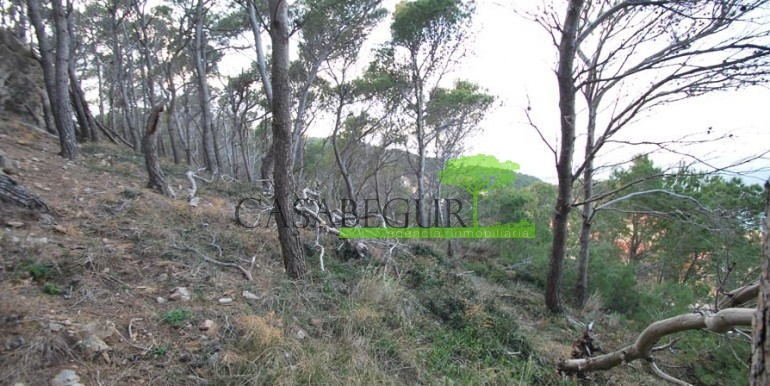 ref-1083-venta-parcela-aiguafreda-sale-plot-sea-views-costa-brava-casabegur-1