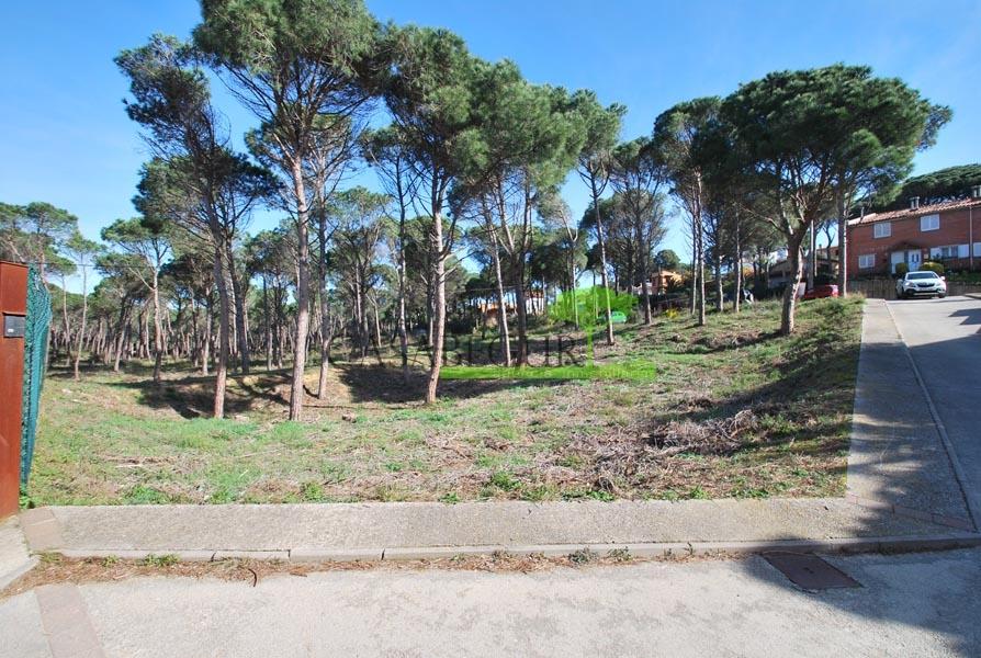 Terreno muy soleado y situado en zona tranquila de Begur