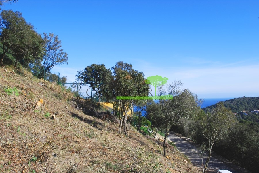 Venta parcela con vistas al mar en Es Valls, Begur
