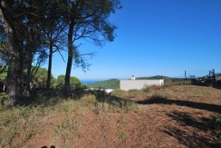 Parcela plana con vistas al mar en Es Valls