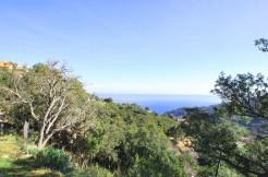 Perceel te koop met uitzicht over de baai van Sa Riera
