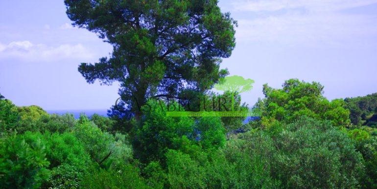 ref-714-sale-properti-sa-riera-mas-mato-sea-views-pool-casabegur-costa-brava-14