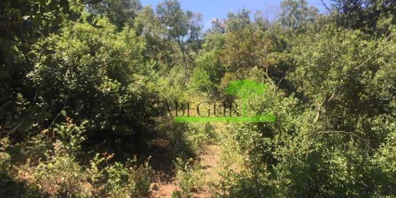 ref-1164-sale-plot-sa-riera-sea-views-costa-brava-casabegur-0
