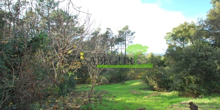 ref-1183-sale-house-calm-area-forrest-farmhouse-casabegur-costa-brava-12