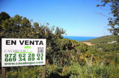 1240-Building plot in Es Valls, fantastic sea view.