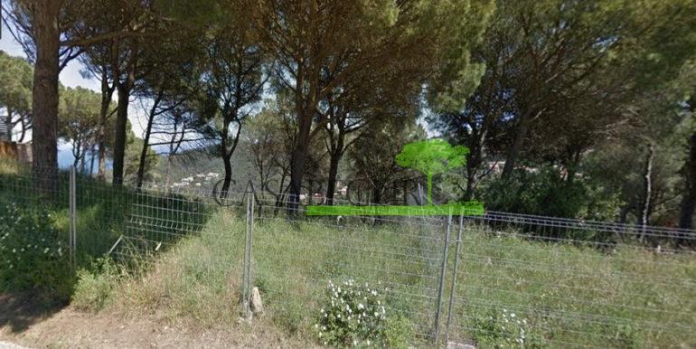 ref-1339-plot-for-sale-begur-es-valls-sa-riera-costa-brava-2